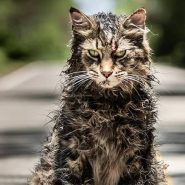 Pet Sematary: Trailers finales