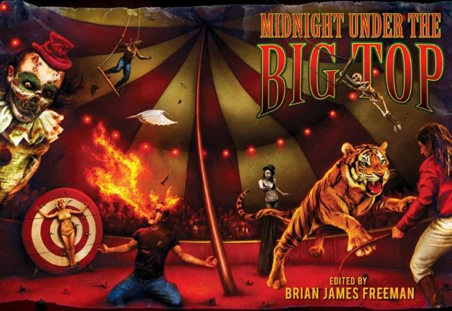Midnight Under the Big Top